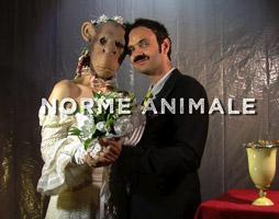Any Tingay, Philippe Savoir - Norme animale - Microfilms - (Définitives Créatures - David Noir)