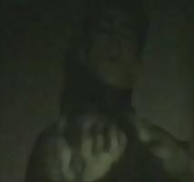 David Noir - Les Animaux Décousus