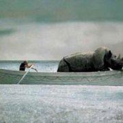 E la nave va - Federico Fellini - 1983