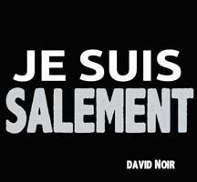 salement_web