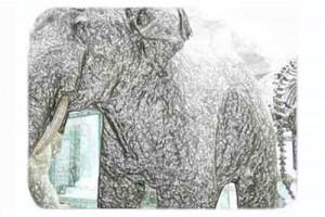 David Noir - Eléphant pétrifié
