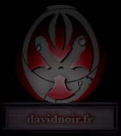 Lien vers davidnoir.fr - Site de performance de David Noir