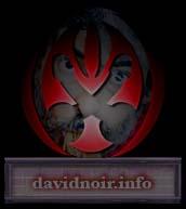 Lien vers davidnoir.info - Site de l'actualité de David Noir Production